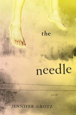 Slow Almost To Dream: A Review of The Needle by Jennifer Grotz